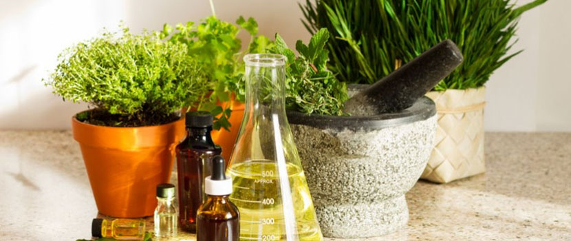 Your Top 4 Concerns About Naturopathy Answered